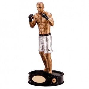Ultimate MMA Fighter